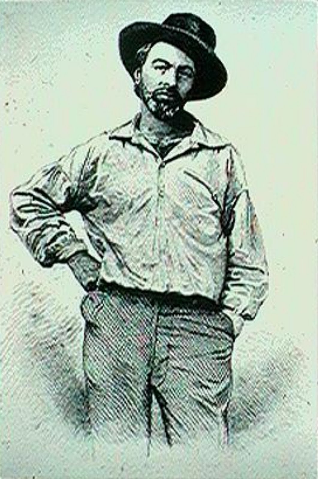 walt whitman and emily dickinson Free essay: walt whitman and emily dickinson both had different and similar views, which influenced how they wrote their poetry their social context, life.